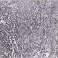 Natur, Pflanzen, Zeichnung, Bleistiftzeichnung