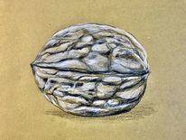 Nüsse, Schale, Buntstiftzeichnung, Illustrationen