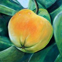 Kaki, Toskana, Früchte, Malerei
