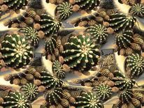 Kaktus, Digitale kunst, Invsiv, Seigelkaktus