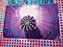 Raumzeit, Outsider art, Zeit, Kaktus