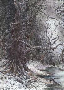 Wald, Düster, Holz, Winter