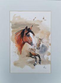 Criollo, Pferde, Pony, Aquarell