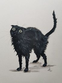 Nass, Kater, Katze, Malerei