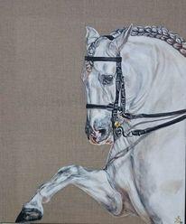 Trensenzaum, Reitweise, Spanischer schritt, Pferde
