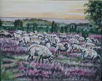 Heide, Schaf, Malerei