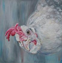Huhn, Augen, Henne, Hühnerbild