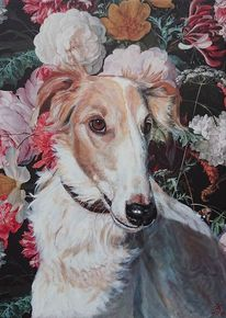Blumen, Hund, Tapete, Barsoi
