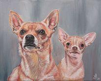 Chihuahua, Portrait, Hund, Malerei