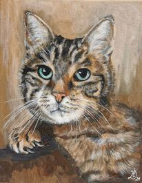 Katze, Kater, Malerei,