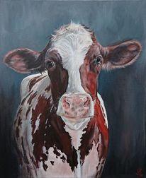 Kuh, Kuhportrait, Holsteiner, Milchkuh