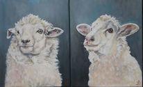 Schaf, Fell, Wolle, Malerei