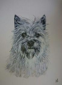 Hund, Terrier, Portrait, Malerei
