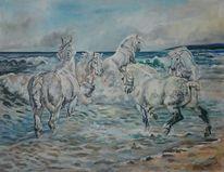 Strand, Himmel, Pferde, Kaltblut
