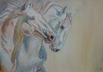 Pferde, Schimmel, Cremello, Malerei