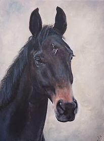 Pferdekopf, Pferde, Portrait, Malerei