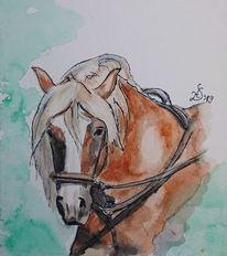 Wasserfarbe, Kaltblut, Pferde, Schwarzwälder