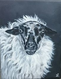 Schaf, Schwarz weiß, Portrait, Malerei