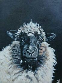 Schaf, Portrait, Malerei