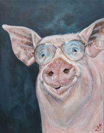 Sonnenbrillen, Schwein, Sau, Bauernhof