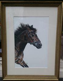 Pferde, Stute, Pony, Malerei