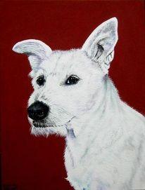 Hund, Tapsi, Weiß, Malerei