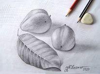 Früchte, Baum, Landschaft, Zeichnungen