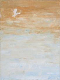Taube, Symbol, Frieden, Stille