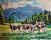 Aquarellmalerei, Tiermalerei, Thannheimer, Weide