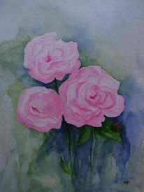 Rose, Rosa, Sommer, Aquarell