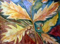 Blätter, Natur, Herbst, Eicheln