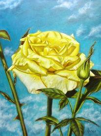 Ölmalerei, Rose, Temperamalerei, Malerei