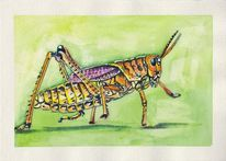 Grashüpfer, Tiere, Insekten, Aquarell