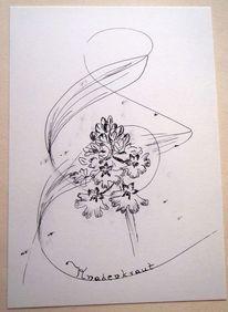 Orchidee, Federzeichnung, Knabenkraut, Rote liste
