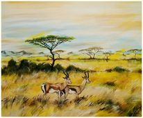 Gras, Landschaft, Savanne, Gazelle