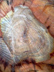 Gefällte, Baum, Malerei, Formen