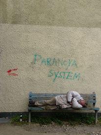 Paranoya system, Fotografie