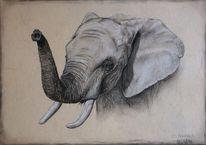 Elefant, Realismus, Tierportrait, Malerei