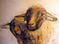 Tiere, Gelb, Malerei, Schaf