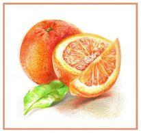 Polychromos orangen, Zeichnungen, Stillleben