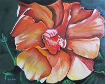 Blumen, Hibiskus, Lasurtechnik, Ölmalerei