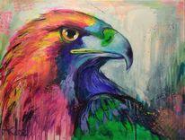 Vogel, Flügel, Bunt, Tiere
