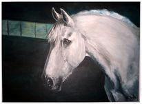 Realismus, Pferd schimmel, Malerei, Schimmel