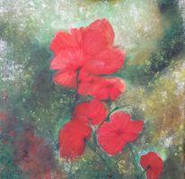 Mohn, Blumen, Malerei, Mohnblumen