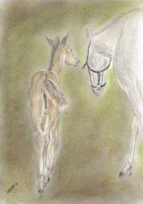 Szene, Porträtmalerei, Fohlen, Pferdezeichnung