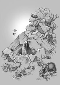 Fischotter, Felsen, Bach, Natur