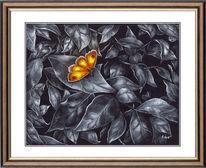 Schmetterling, Farbtuper, Blätter, Zeichnungen