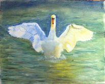 Ölmalerei, Schwan, Malerei, Bodensee