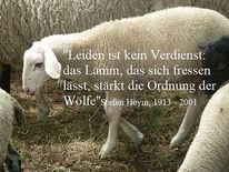 Tiere, Schaf, Zitat, Philosophie