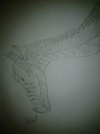 Nessi lochness drache, Zeichnungen, Drache